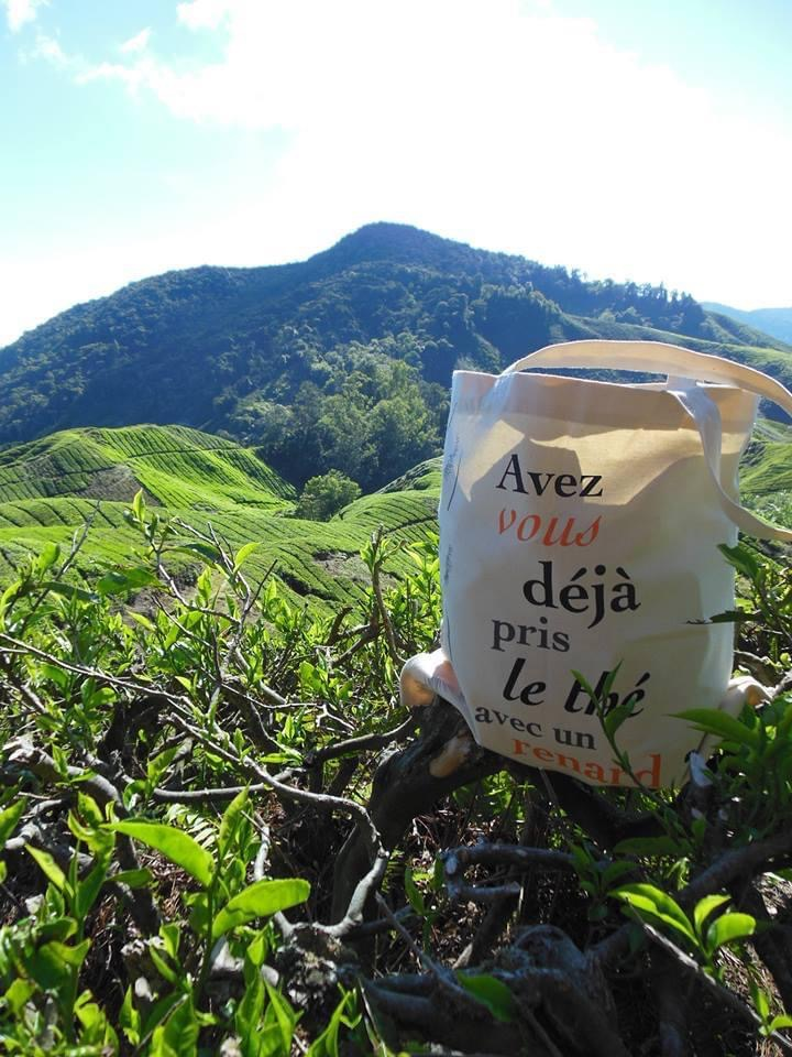 sac thé-ritoires