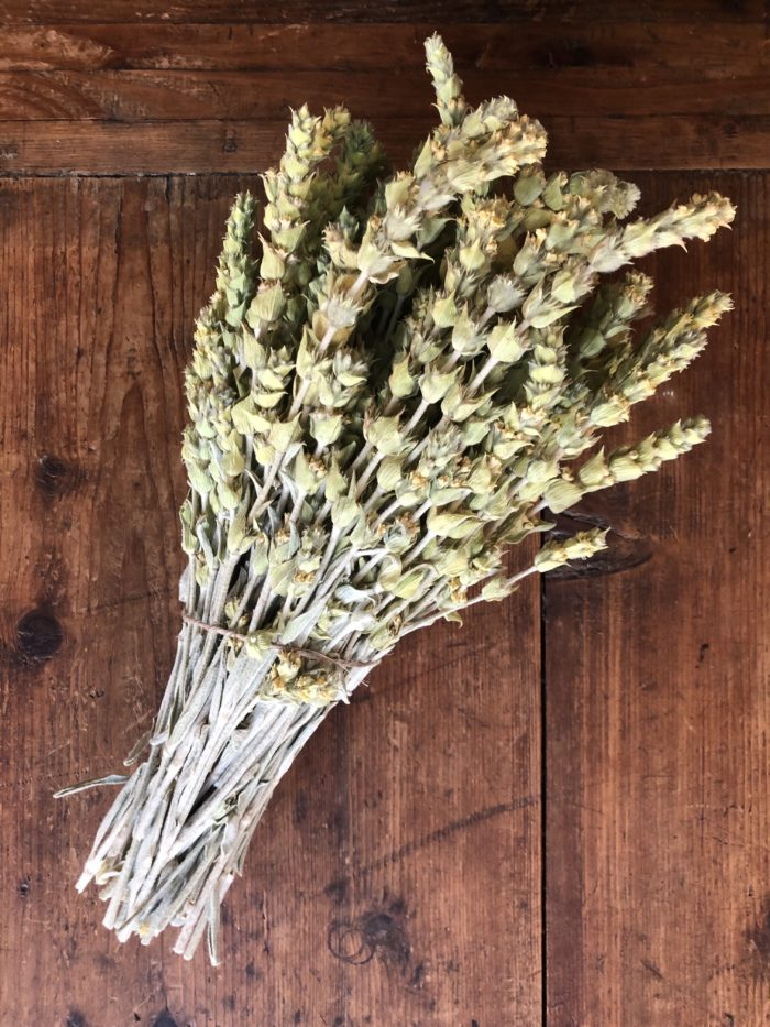 bouquet de sideritis